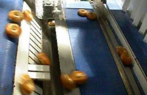 Embedded thumbnail for EyePro System - Bagel Dual Rejection